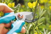 Zahradní nůžky Classic